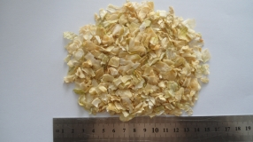 Dehydrated Onion 10*10mm